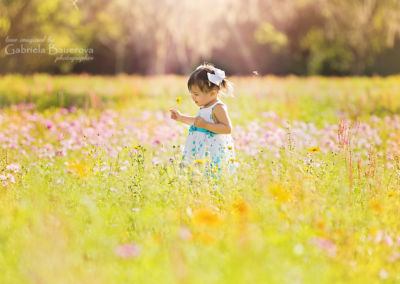 flower-fields-Izzy-2